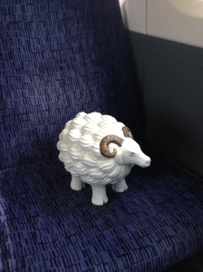 Mabel on the train