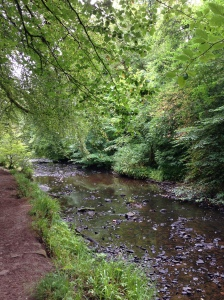 Calderglen Country Park, near Glasgow