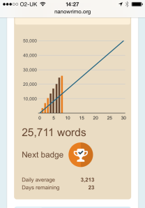 NaNoWriMo - 25,000 words badge