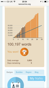 NaNoWriMo - 100,000 words!