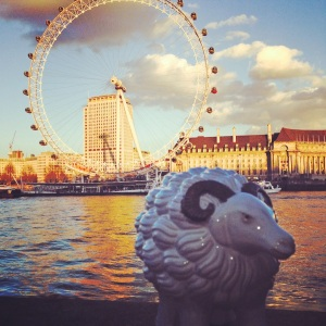 Mabel the sheep in London
