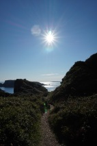 View from Sark