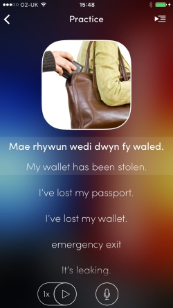 My wallet has been stolen in Welsh